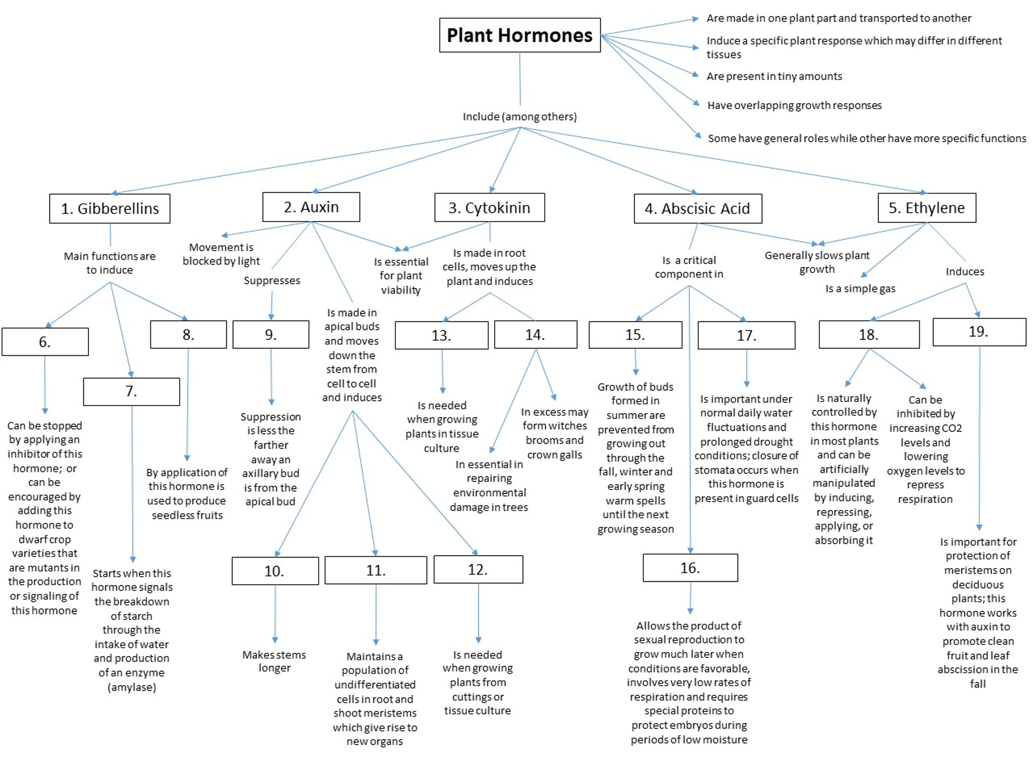 Hormone Concept Map.Solved Q1 Place The Correct Term In The Appropriate Locat