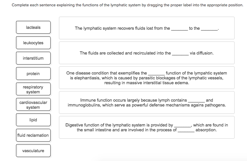 Solved: Complete Each Sentence Explaining The Functions Of ...