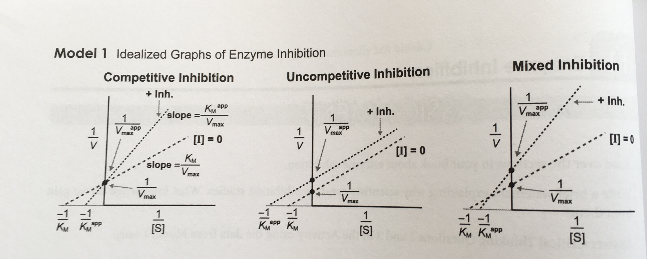 Solved 2 How Does The Value Of V Max For The Enzyme Comp
