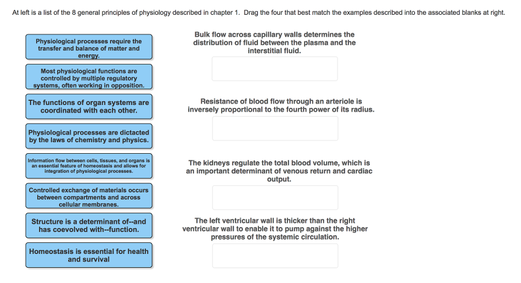 At Left Is A List Of The 8 General Principles Physiology Described In Chapter 1