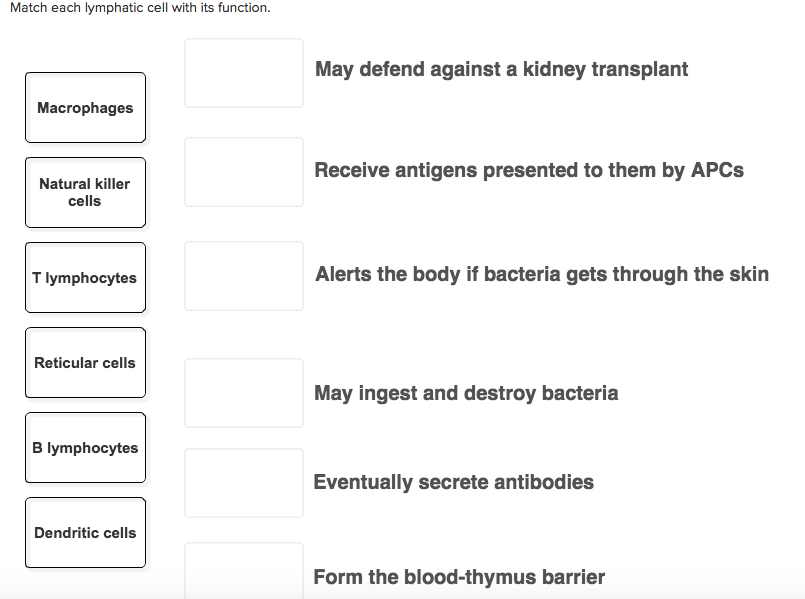 Solved Match Each Lymphatic Cell With Its Function May D