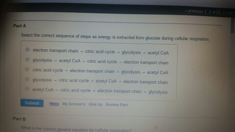 Solved: Select The Correct Sequence Of Steps As Energy Is ...