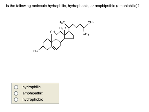 hydrophilic vs hydrophobic molecules