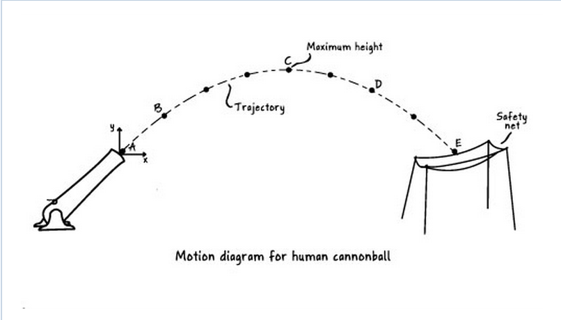 Solved  Use The Motion Diagram In  Figure 1  Showing The T