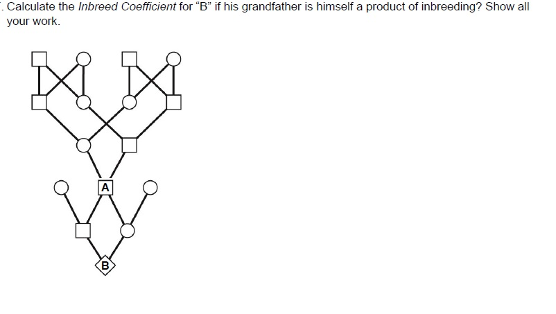 solved calculate the inbreed coefficient for b if his g