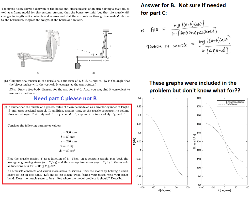 Please Do The Graphing In MatLab  I Need Help Wit    | Chegg com