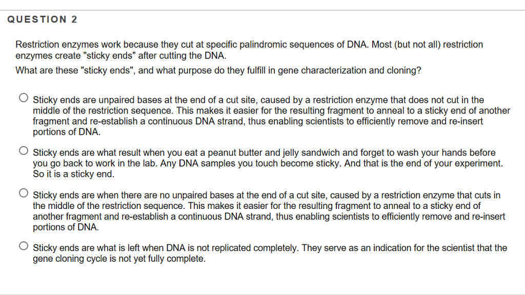 solved question 2 restriction enzymes work because they c
