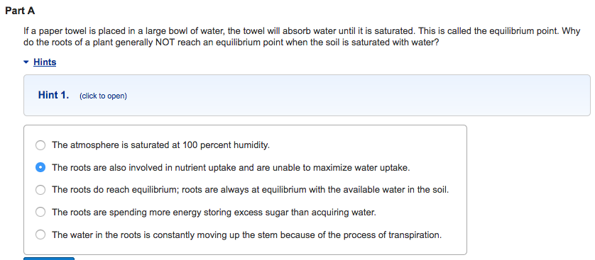 how do paper towels absorb water