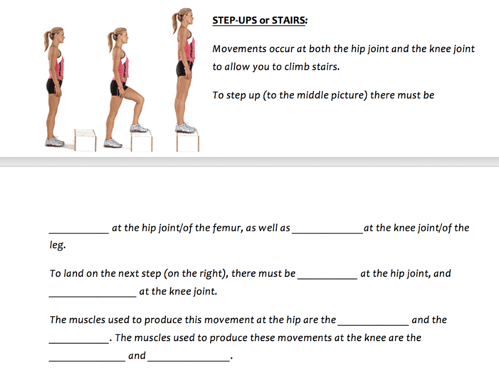 Solved Step Ups Or Stairs Movements Occur At Both The Hi