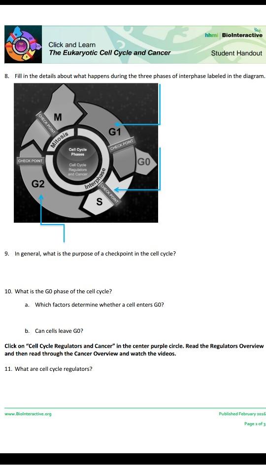 Solved hhmi biolnteractiv click and learn the eukaryotic media2f9c62f9c6bb879 cac1 433c 845a e8 ibookread ePUb