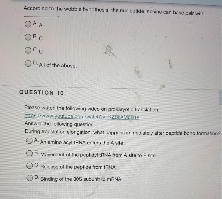 wobble hypothesis trna