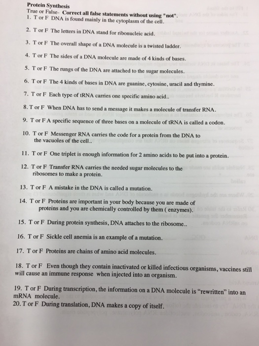 Solved T Or F Dna Is Found Mainly In The Cytoplasm Of The