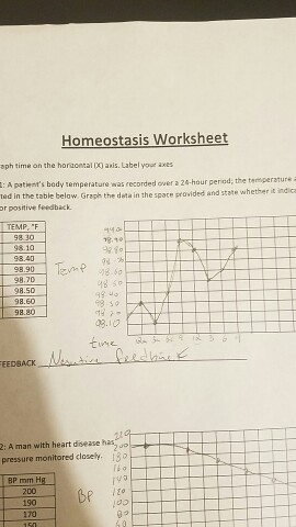Solved: Homeostasis Worksheet Me On The Horizontal Axis. L ...