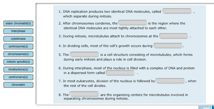 cell division essay questions Bio 1 exam 1 essay questions: name the five structures involved in the production of a protein in a eukaryotic cell and describe the step in protein production.