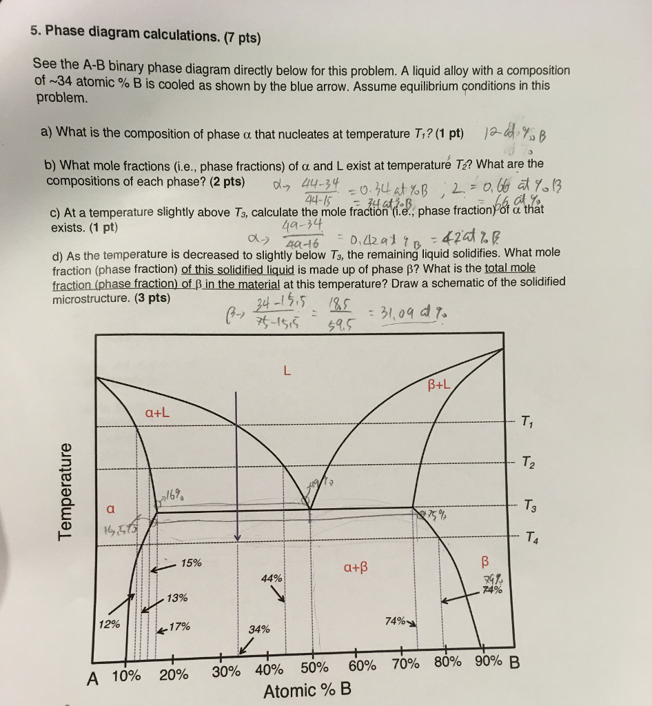 Solved 5 phase diagram calculations 7 pts see the a b phase diagram calculations 7 pts see the a b binary phase diagram ccuart Gallery
