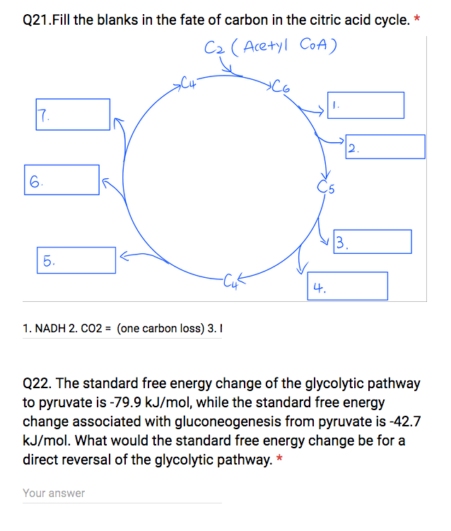 Solved Fill The Blanks In The Fate Of Carbon In The Citri