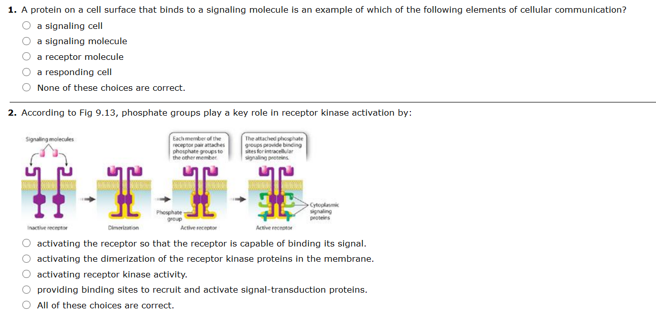 Solved A Protein On A Cell Surface That Binds To A Signal