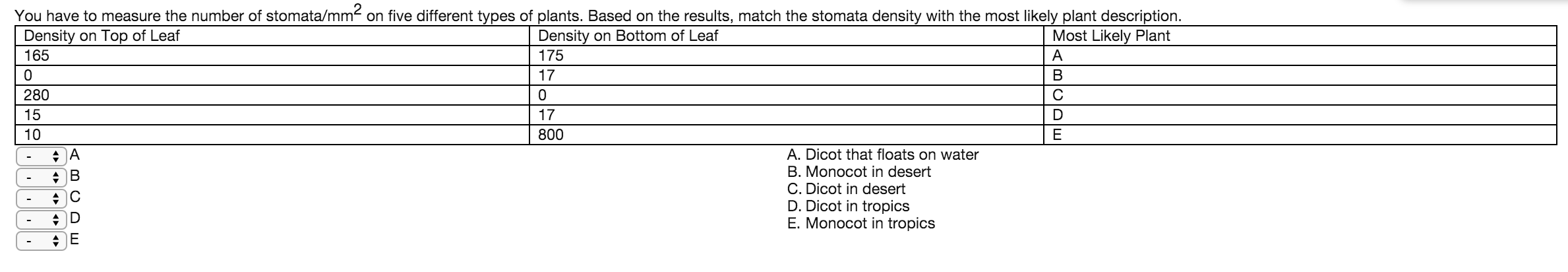 stomata density lab internal assessment Stomatal density in leaves of various xerophytes-a preliminary study david w strobel and marshall d sundberg abstract - recent general botany and plant anatomy textbooks state that stomatal density of xerophytic leaves is.