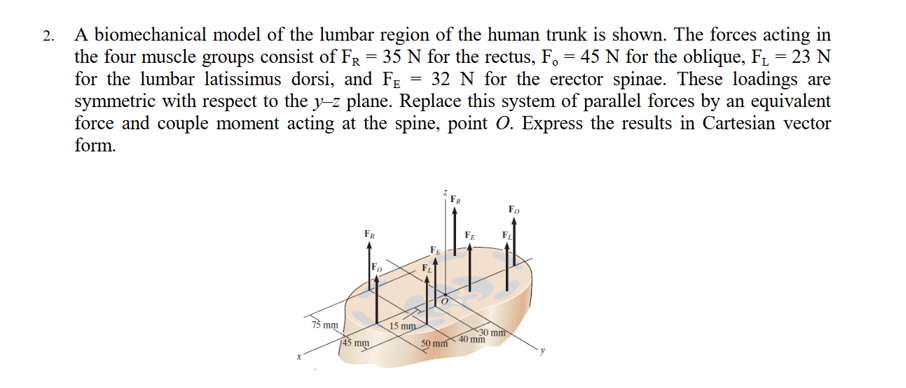 Solved: A Biomechanical Model Of The Lumbar Region Of The ...