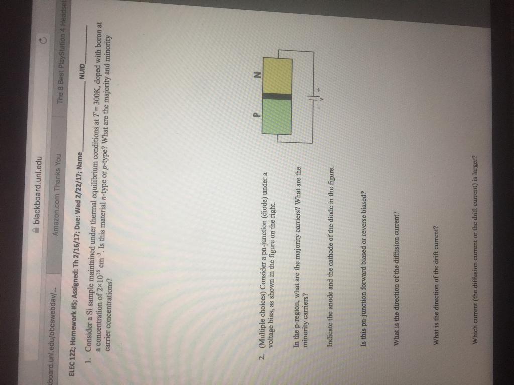essay paper reports ks1