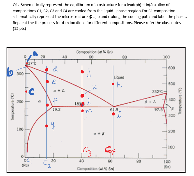 Solved: Q1. Schematically Represent The Equilibrium Micros ... on