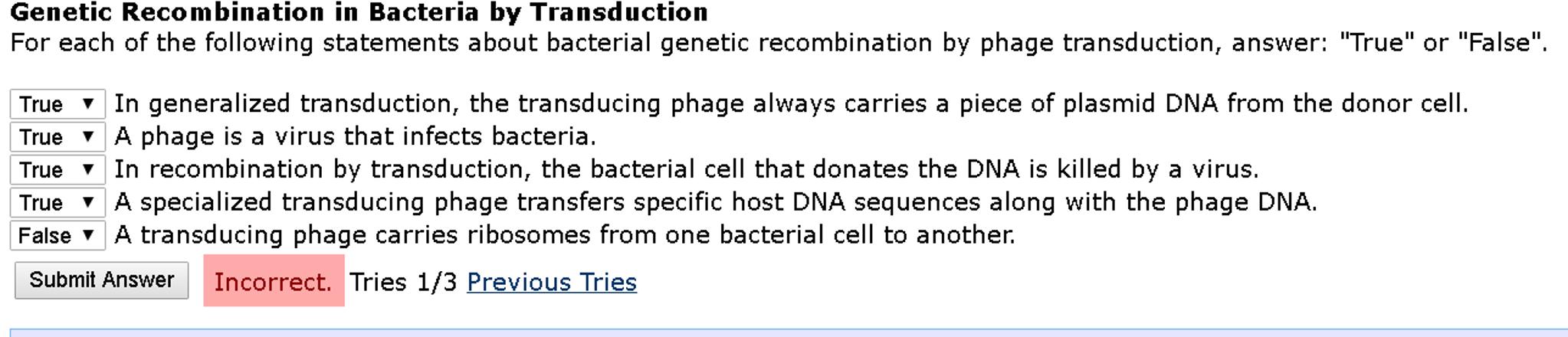 bacterial recombination essay