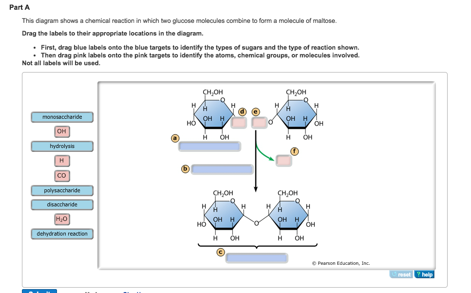 Solved: This Diagram Shows A Chemical Reaction In Which Tw ...