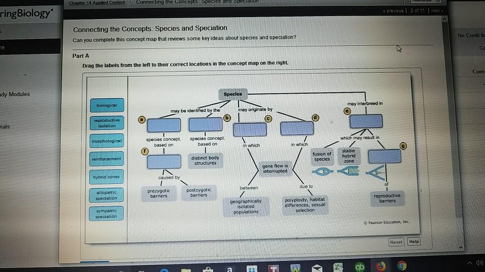 Solved: Connecting The Concepts Es AndSpeciadon RingBiolog