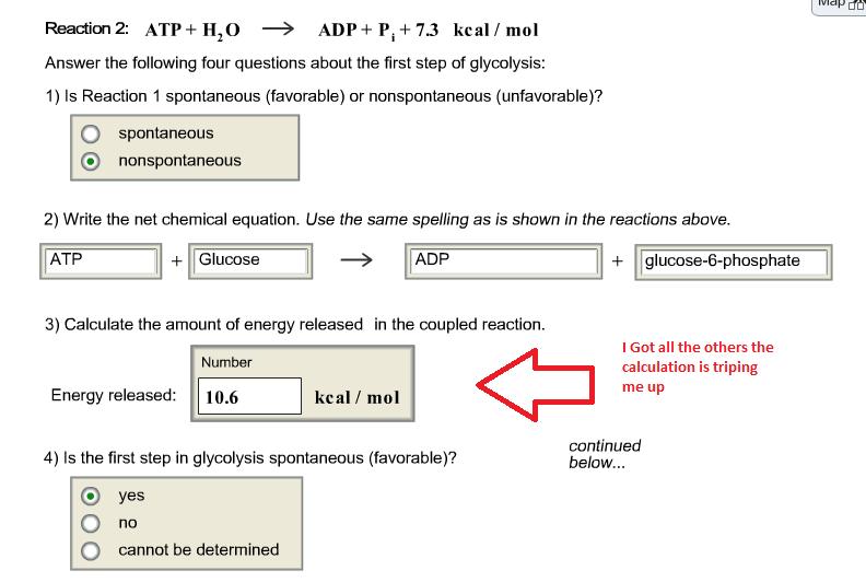 Net chemical equation calculator
