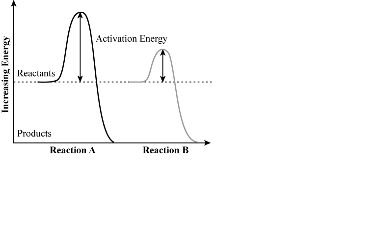 Solved The Graph Below Shows The Activation Energy Requir