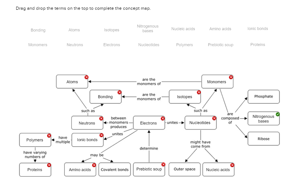 Concept Map Nucleic Acids.Solved Drag And Drop The Terms On The Top To Complete The