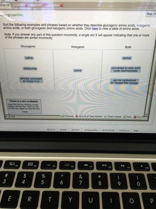 ebook über die