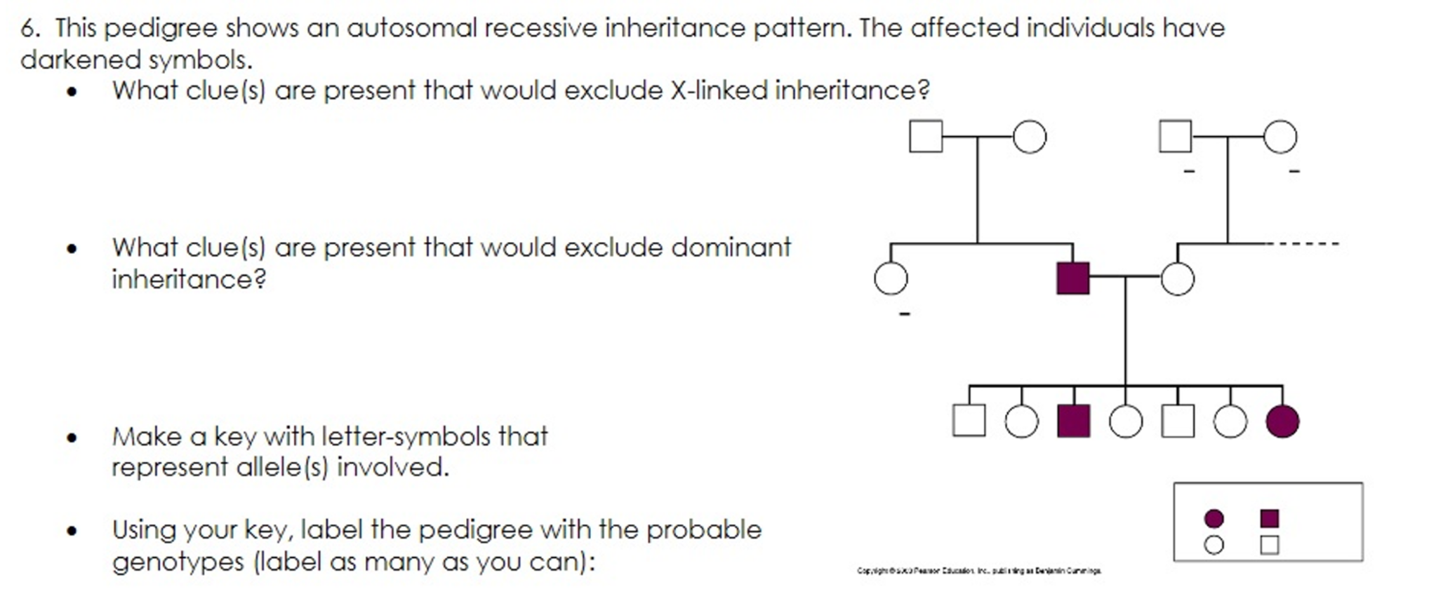 Solved This Pedigree Shows An Autosomal Recessive Inherit