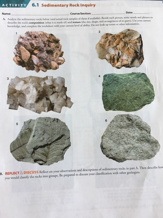 Solved Analyze The Sedimentary Rocks Below And Actual Ro