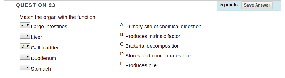 Solved: Match The Organ With The Function. Large Intestine ...