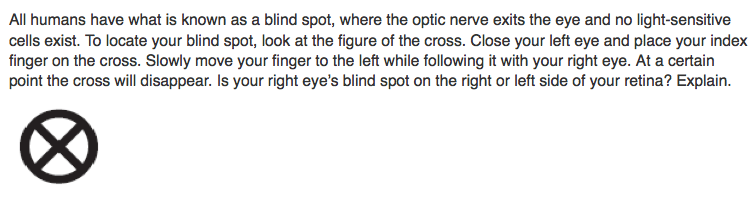 Solved All Humans Have What Is Known As A Blind Spot Whe