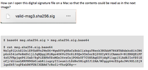 How Can L Open This Digital Signature File On A Ma