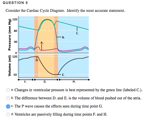 Solved  Consider The Cardiac Cycle Diagram  Identify The M