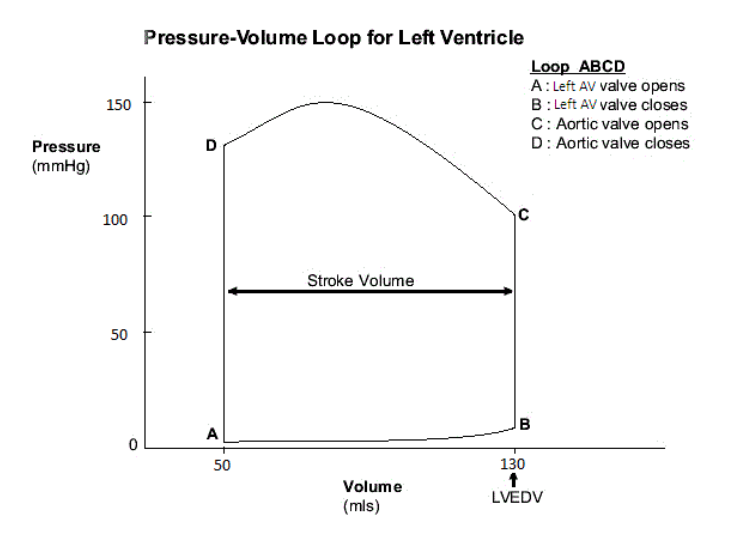 Calculate The Pressure-volume Work Performed By Th    | Chegg com