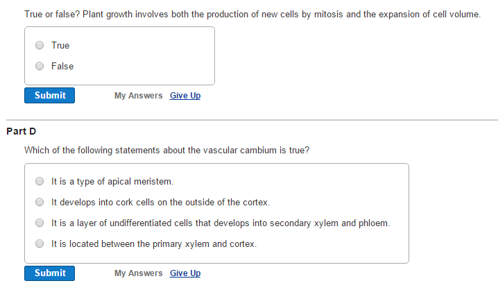 All Worksheets 92 The Process Of Cellular Respiration Worksheet – Xylem and Phloem Worksheet