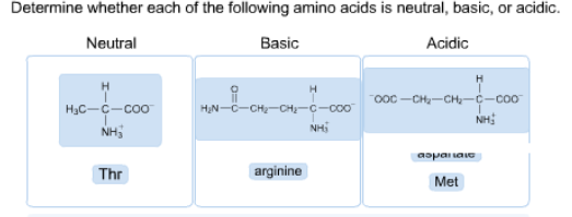 Solved determine whether each of the following amino acid determine whether each of the following amino acid altavistaventures