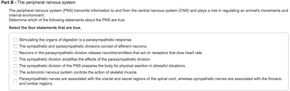 Essay questions on autonomic nervous system