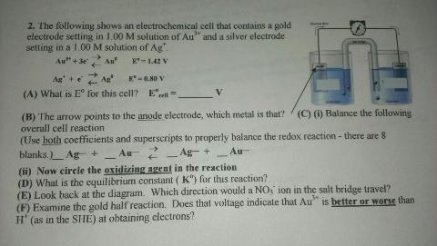 electrochemical cell essay What groups listed below have true cell walls  essay questions answer all parts of the  draw a diagram that explains how a bacterium uses an electrochemical.