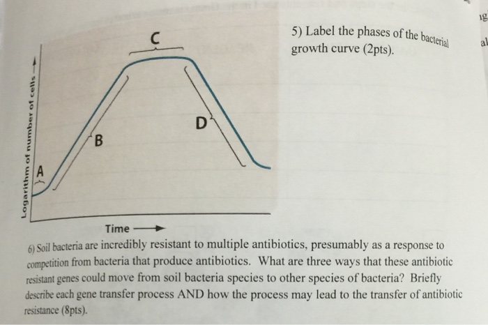 Solved label the phases of the growth curve soil bacteria label the phases of the growth curve soil bacter ccuart Image collections