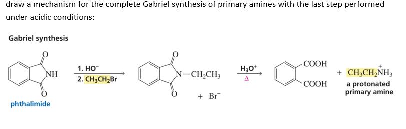 Stereoisomers of 2Chlorobutane