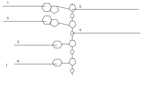Solved Fill Out The Following Diagram Of A Dna Strand La