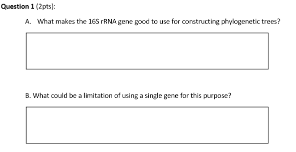 question 1 2pts a what makes the 16s rrna gene good to use