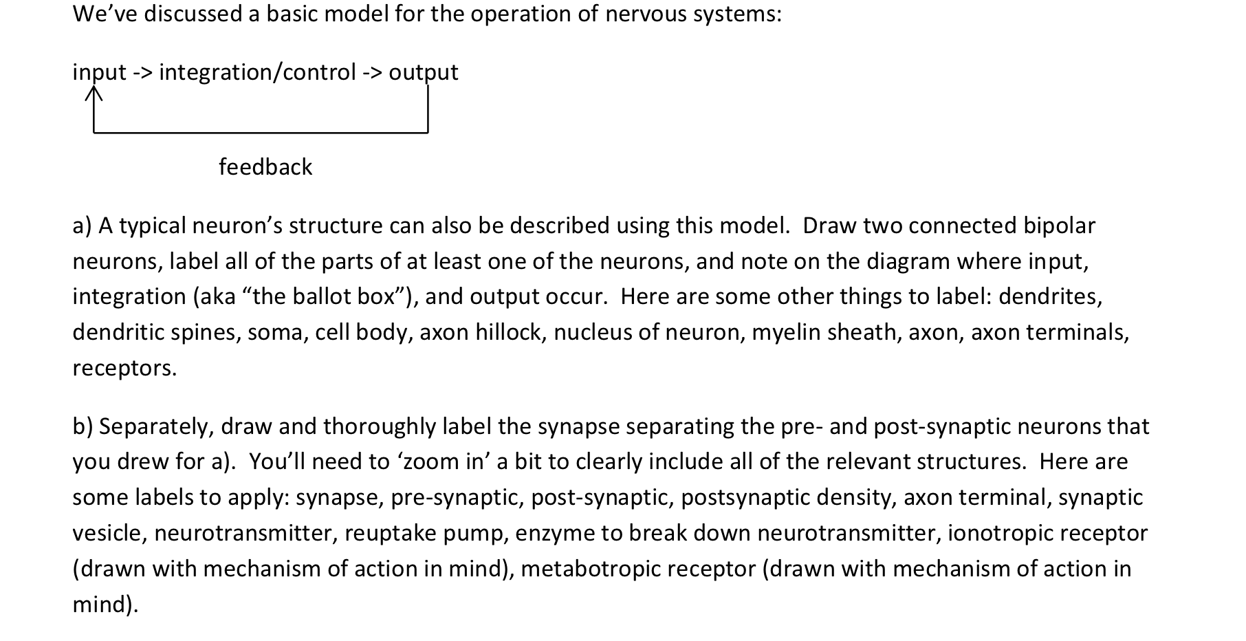biology archive com we ve discussed a basic model for the operation of nervous systems a typical neuron s structure can also be described using this model draw two connected