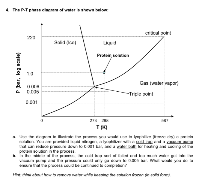 4 The P T Phase Diagram Of Water Is Shown Below C Chegg