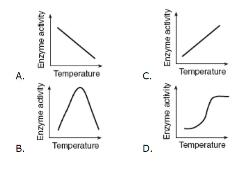 optimum temperature